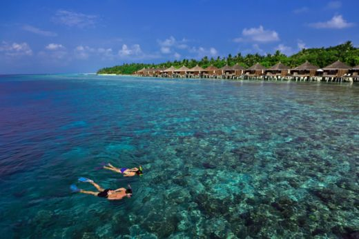 Schnorcheln vor Kuramathi - Fotocredit: © Universal Resorts Maldives