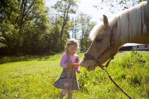 Sauerland ist für die Kleinen das Größte. - Sauerland-Tourismus e. V.; Fotograf Tanja Evers