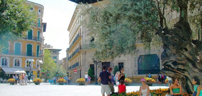 Urlaub auf Mallorca 002