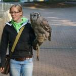 Tier Erlebnispark Bell 0004