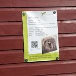 Tier Erlebnispark Bell 0023