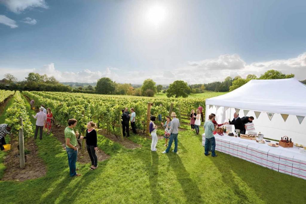 """Das prämierte Weingut """"Chapel Down Winery"""" in Tenterden ist definitiv einen Besuch wert. Probiert erlesene Weine und gutes Essen. - Credits: DFDS Seaways"""